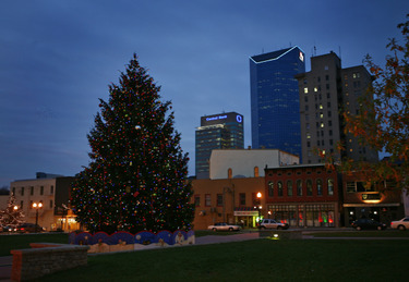 Downtown_christmas_tree