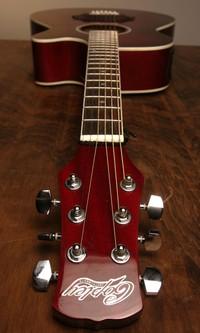 Copley_guitar_longshot